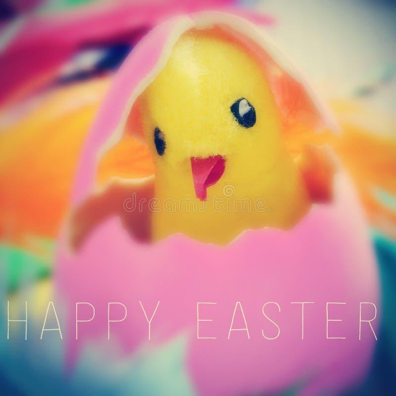 Misia pluszowego kurczątko w Easter jajku szczęśliwy Easter i tekscie obraz stock