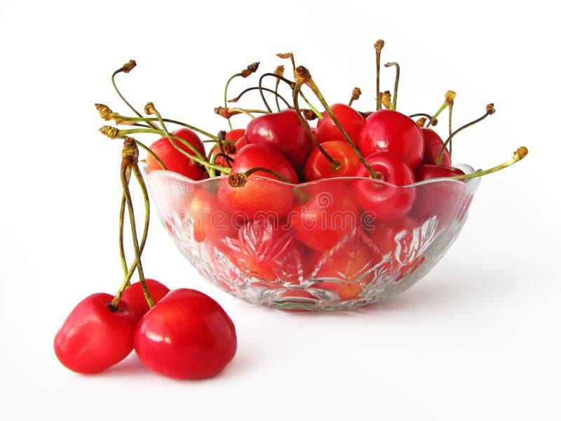 miska cherry okulary sweet obraz royalty free