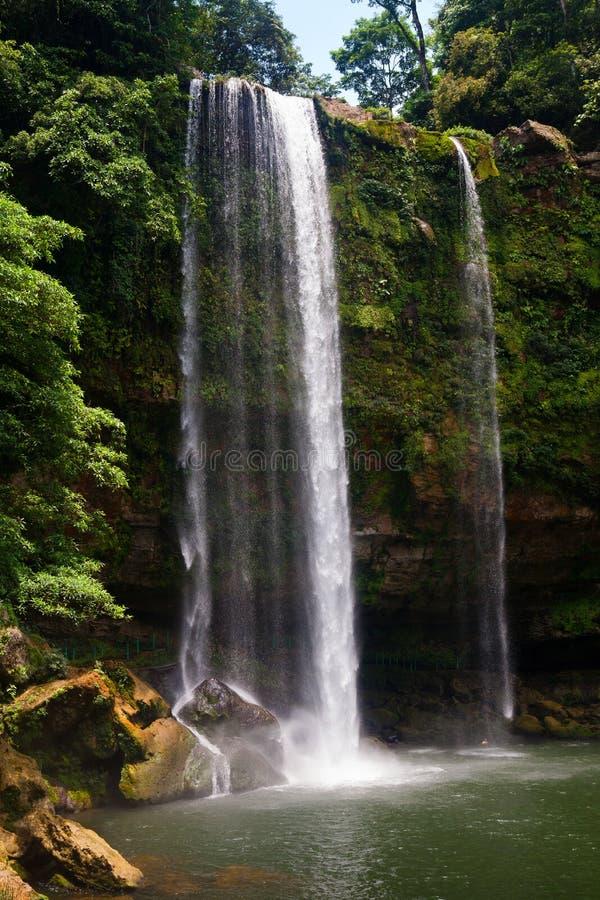 Misol Ha在帕伦克,恰帕斯州,墨西哥附近的瀑布 库存图片