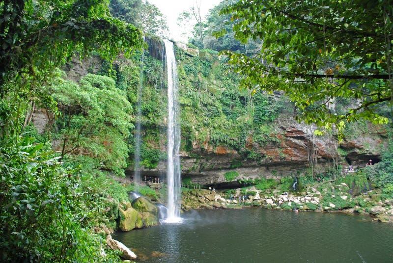 Misol Ha瀑布在墨西哥 库存图片