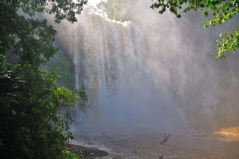 Misol Ha Waterfall, Mexico royalty free stock image