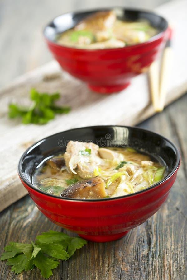 Misosuppe mit Entenbrust lizenzfreie stockfotos