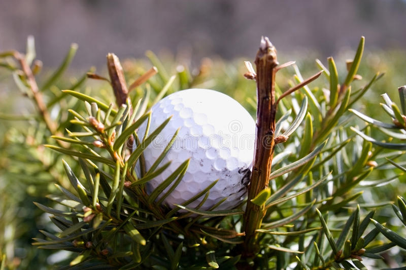 Misplaced Golfball stock photo