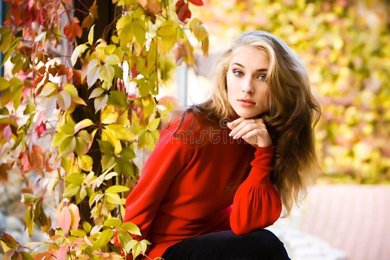 Miss Autumn Stock Photography