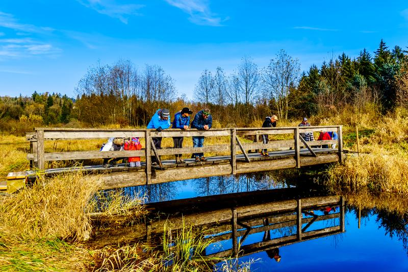 Three generations of a family on a bridge on the hiking trails of Silverdale Creek Wetlands, a freshwater Marsh and Bog royalty free stock photos