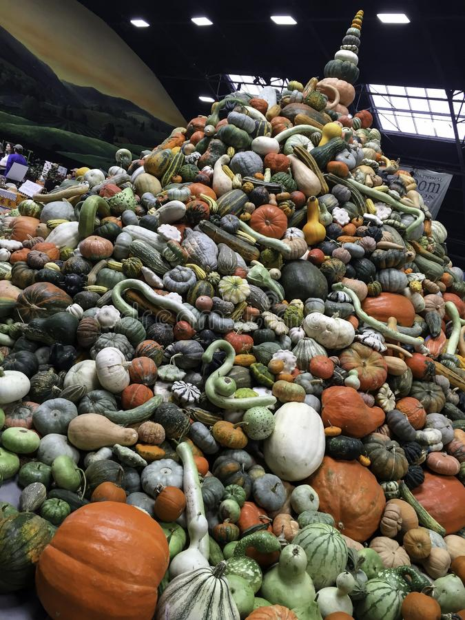 A stacked pile of squash and pumpkins at the 2017 National Heirloom Expo in Santa Rosa, CA. The mission of the National Heirloom Expo, held annually in Santa royalty free stock images