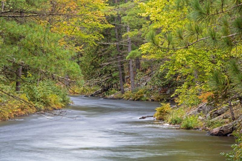 Mississauga-Fluss-Pressungen zwischen den Kiefern lizenzfreie stockbilder