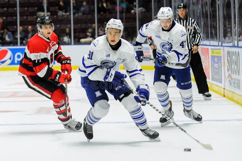 Mississauga-Stahlköpfe gegen Ottawa 67 Hockeyspiel lizenzfreie stockfotografie