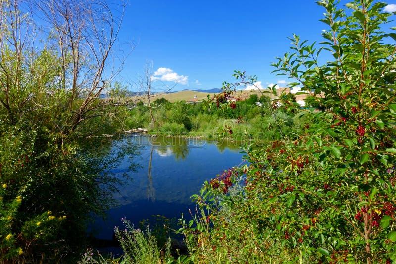 Missoula, Montana photo stock