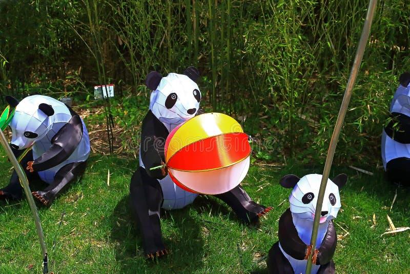 Missouri Botanical Gardens panda bear lanterns royalty free stock photography