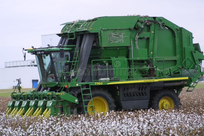 Missouri Cotton 2019 XI royalty-vrije stock afbeeldingen