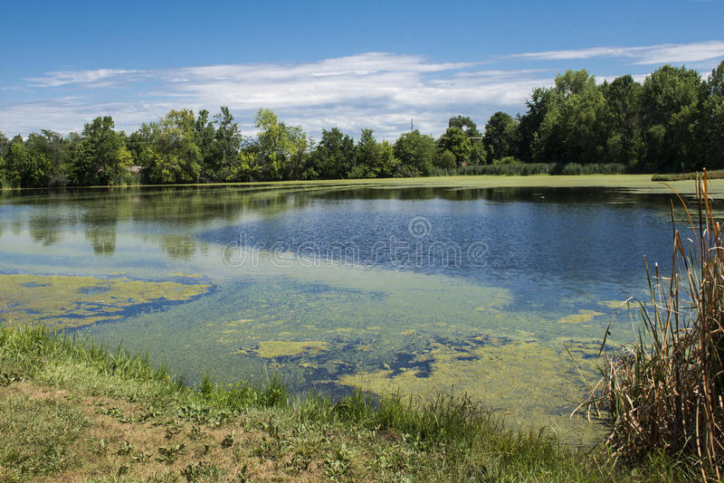 Missouri lake. A lake or pond in rural town in Midwestern Missouri stock image