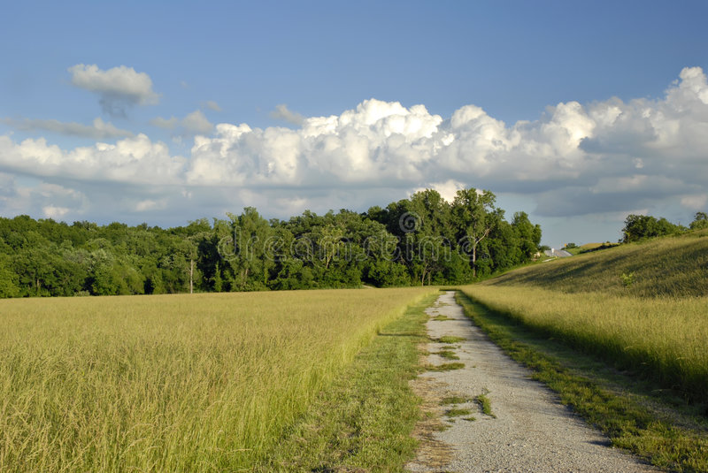 Missouri Meadow royalty free stock images