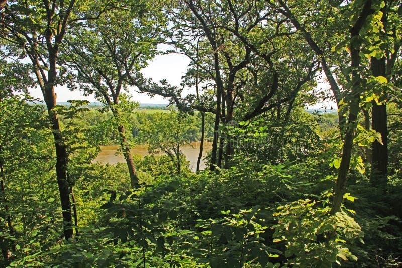 Missouri River som sett från en Fontenelle Forest Trail arkivfoton