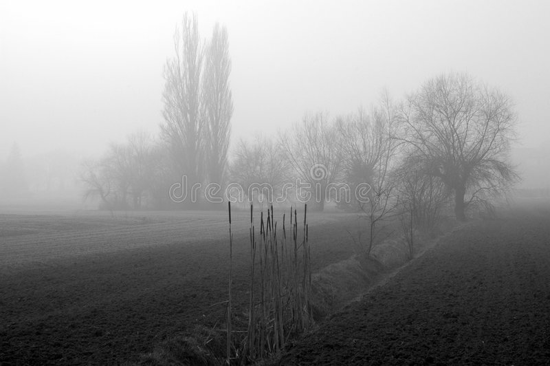 Mist 02 stock foto's
