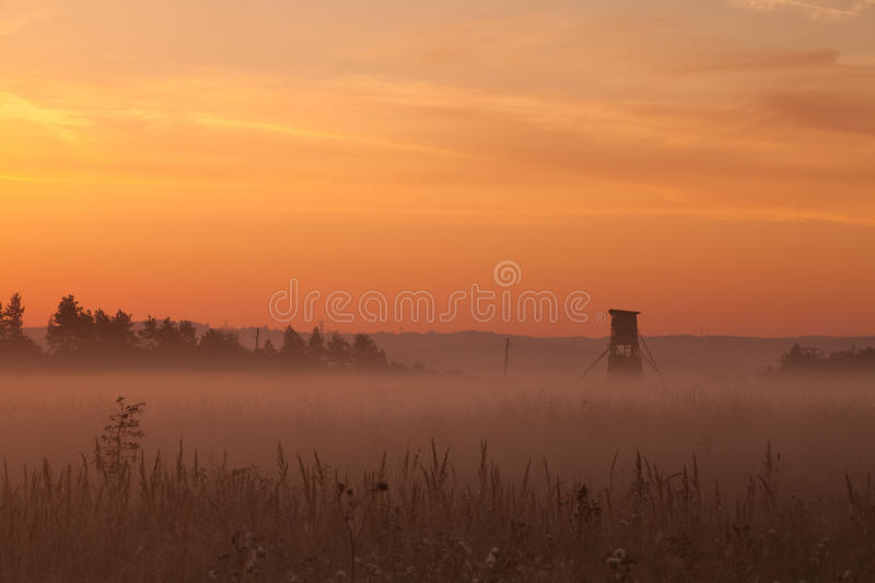 Download In the mist stock image. Image of season, autumn, nature - 22643793