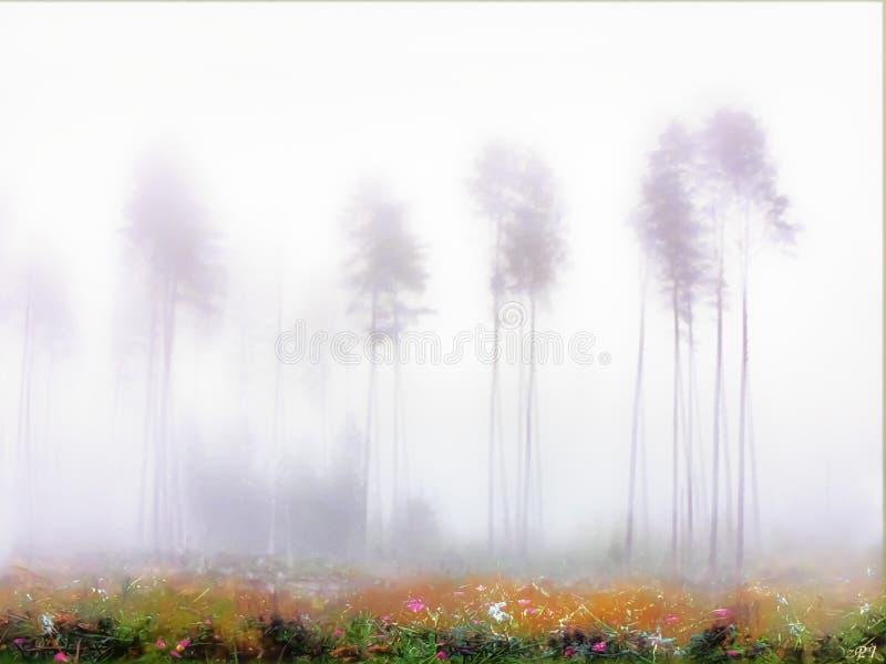 Mist aan de rand van het moeras stock foto