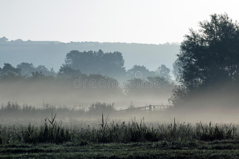 Mist Across Meadow royalty free stock photography