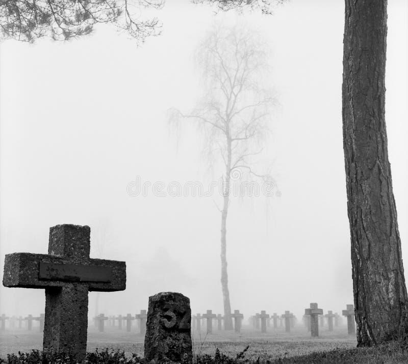 Free Mist At Cemetery Gravestone Cross Pine Trees Park Royalty Free Stock Image - 11549526