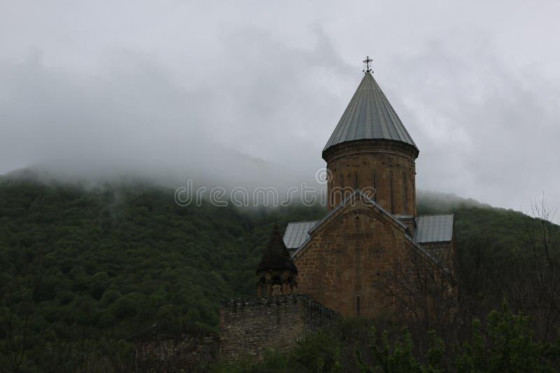 Mist-behandelde toren van oude Georgische vesting Ananuri royalty-vrije stock afbeelding