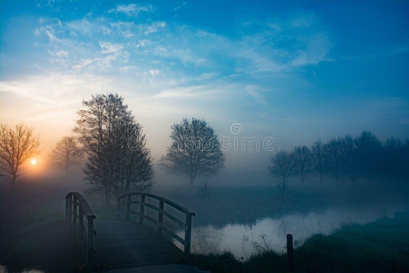 Mist bij een kleine rivier stock foto's