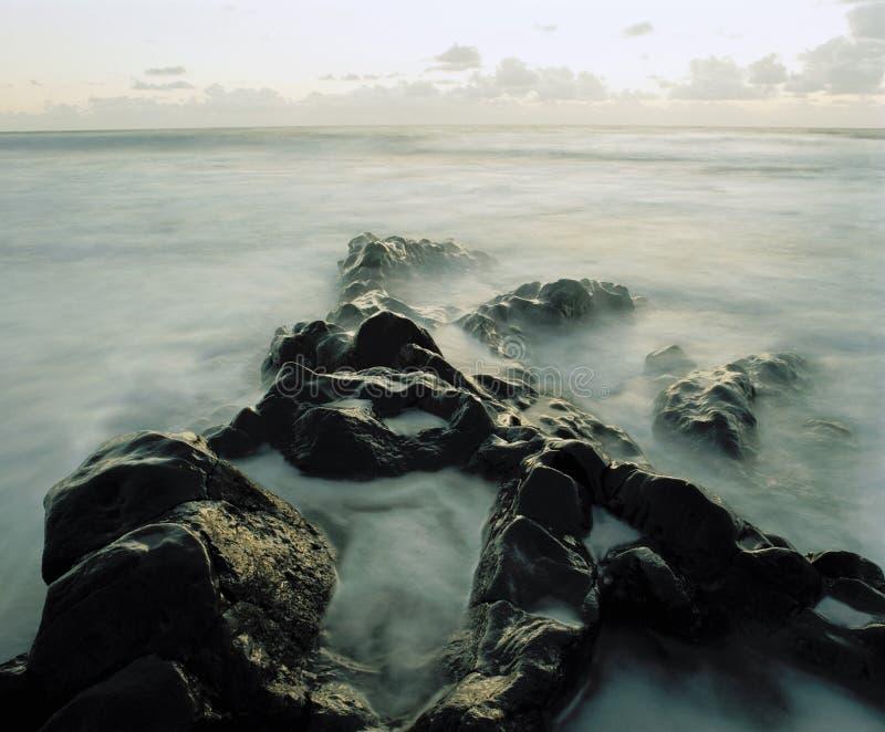 Mist bland vaggar på kusten arkivbild