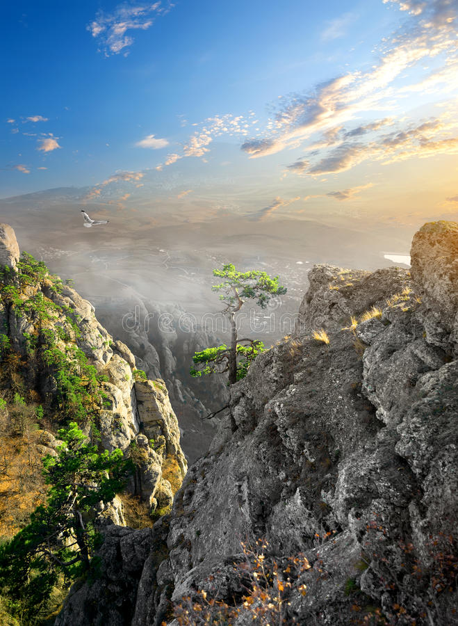 Mist in canion royalty-vrije stock foto's