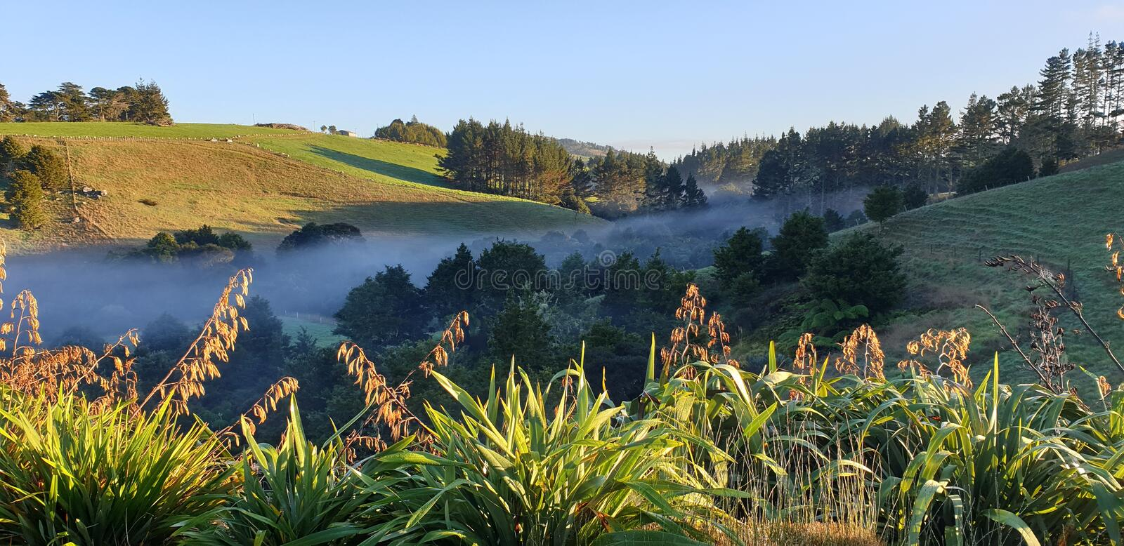 Mist creeps up the valley on a New Zealand farm stock images
