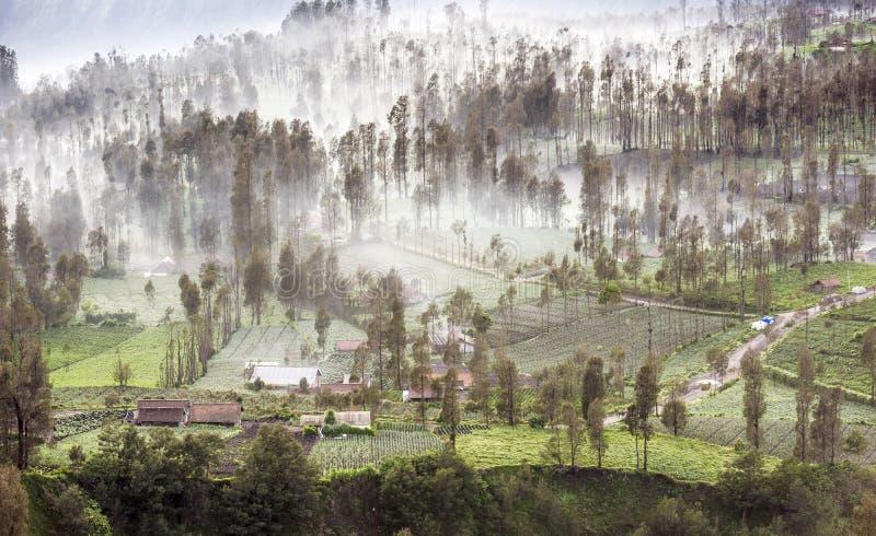 Mist die die over het dorp van Cemoro Lawang in de ochtend stromen aan ten noordoosten van MT Bromo, Indonesië wordt gevestigd royalty-vrije stock foto