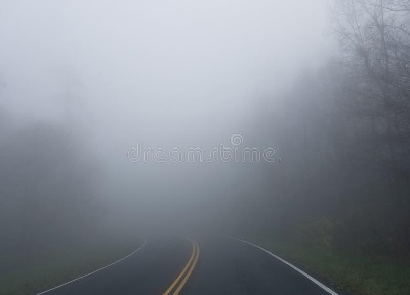 Mist in een bos in de herfst stock afbeelding