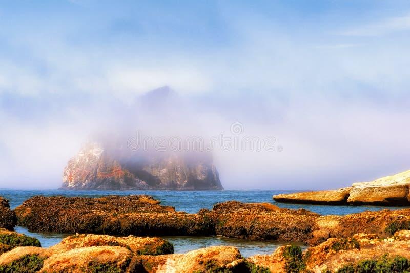 Mist en Hooibergrots bij Kaap Kiwanda stock afbeeldingen
