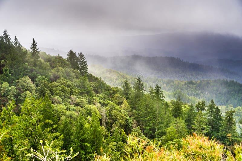 Mist en onweerswolken die de groene heuvels en de valleien van Santa Cruz-bergen behandelen royalty-vrije stock foto