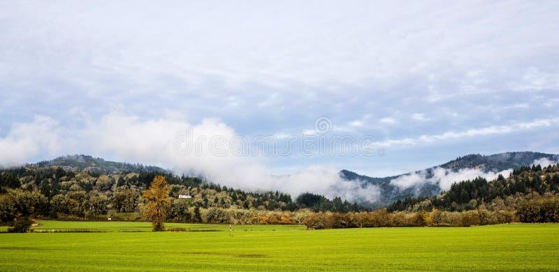 Mist en zon op de herfstochtend in Corvallis, Oregon royalty-vrije stock afbeelding