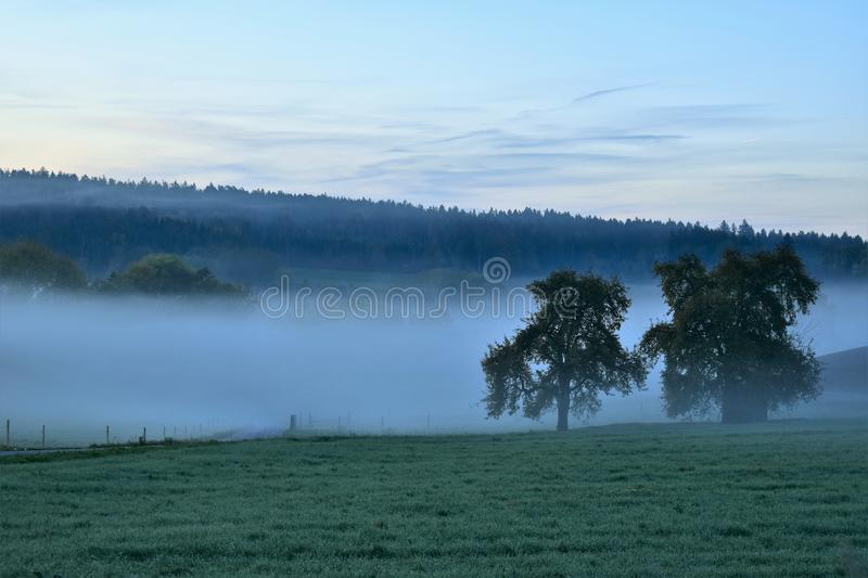 Mist, Fog, Dawn, Morning stock photos