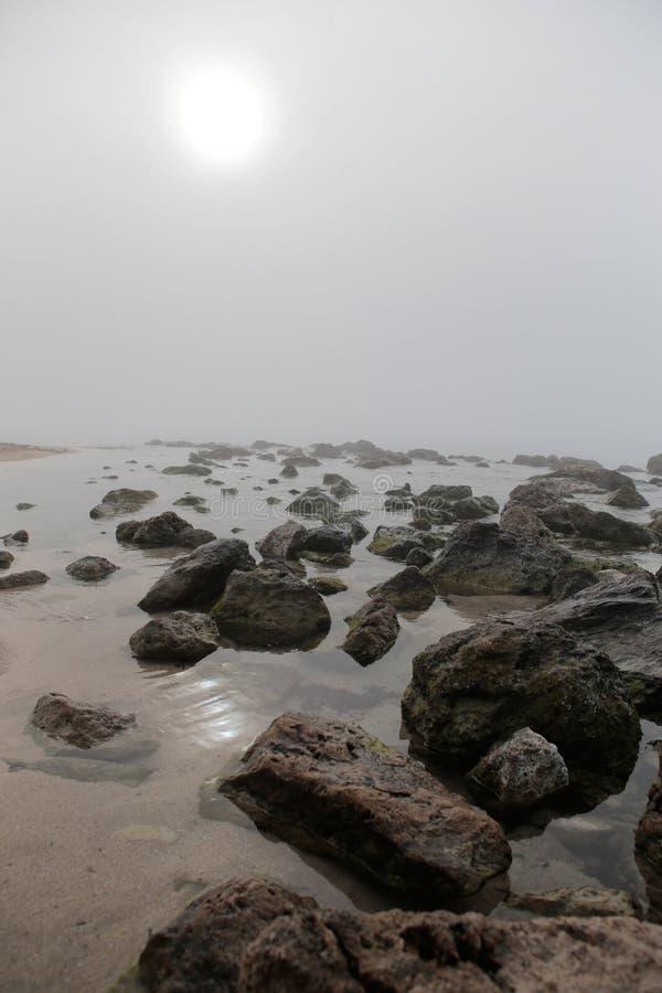 Mist in het strand van Gr arenal in Mallorca royalty-vrije stock fotografie