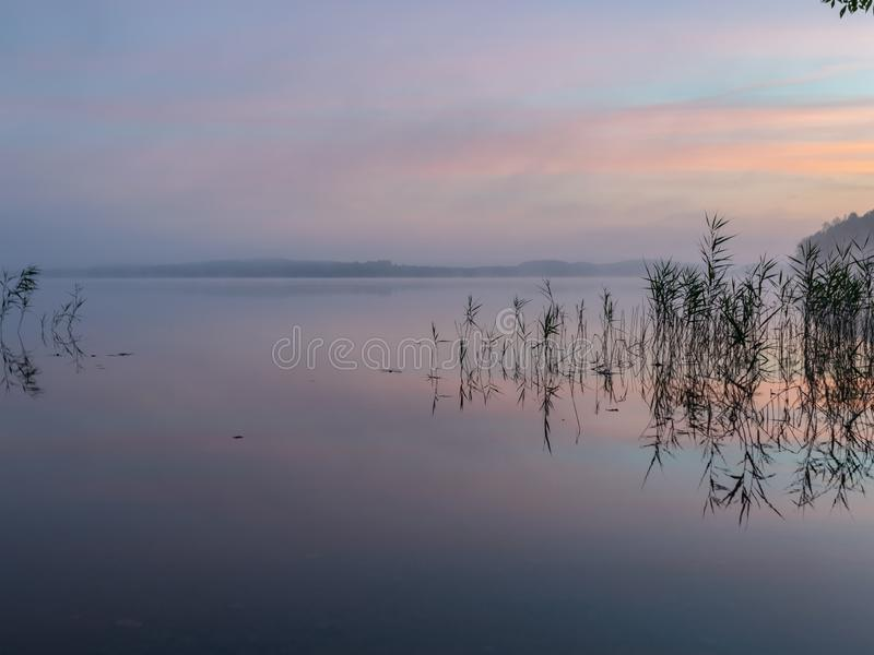Mist landscape, blurred shapes, reed reflection in water, sunrise on lake royalty free stock photography