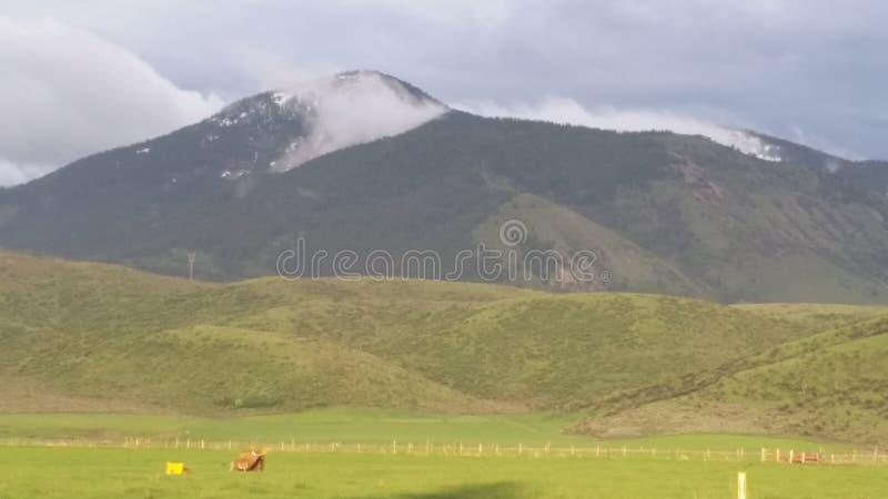 Mist on the mountain stock photography