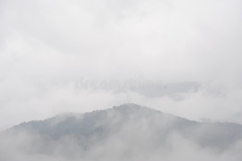 Mist na regen, de mening van het Berglandschap stock foto's