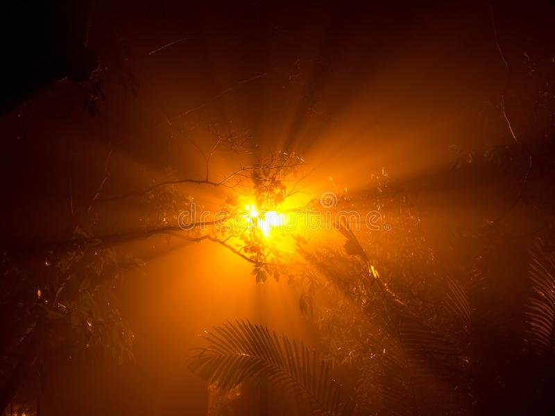 Mist Night in Hong Kong. Light Night Fear Dark Mystery Concept stock images