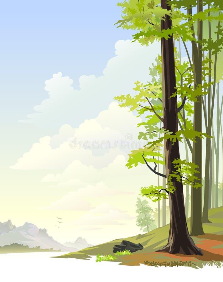 Mist in Oosters Regenwoud royalty-vrije illustratie