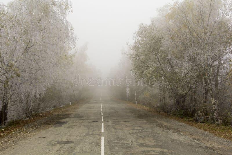 Mist op een de herfstweg royalty-vrije stock foto's