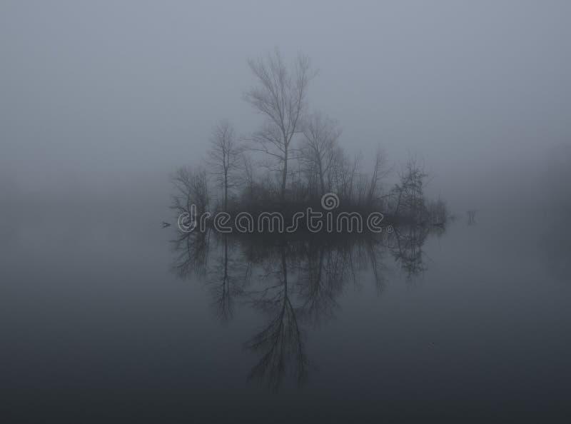 Mist op een meer bij dageraad stock afbeeldingen