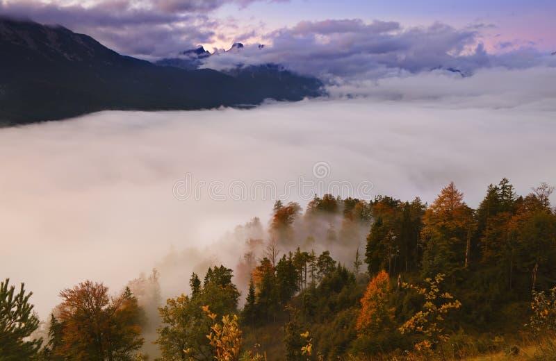 Mist over bos in bergen stock foto