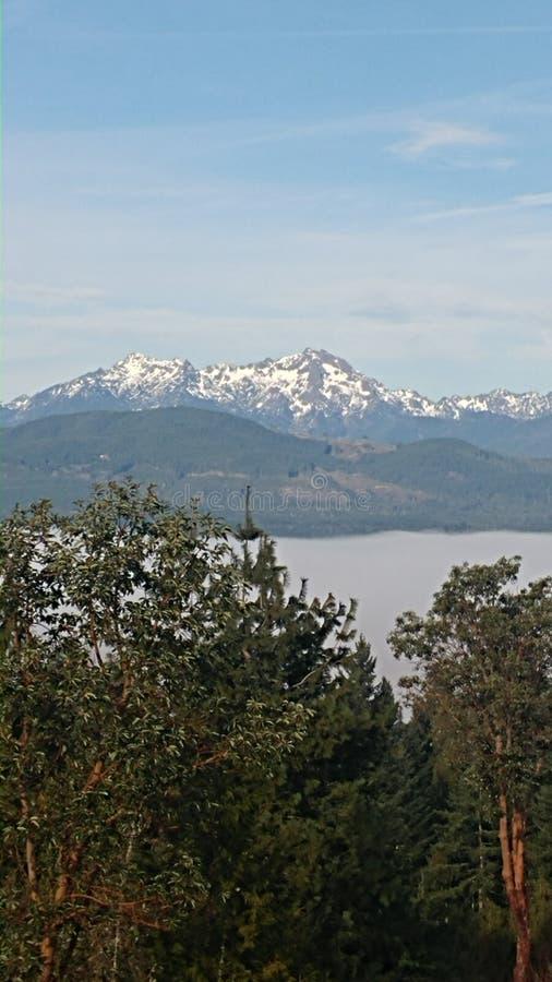 Mist over fjord royalty-vrije stock fotografie