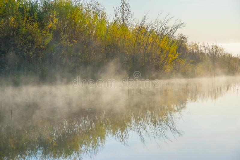 Mist over the lake royalty free stock image