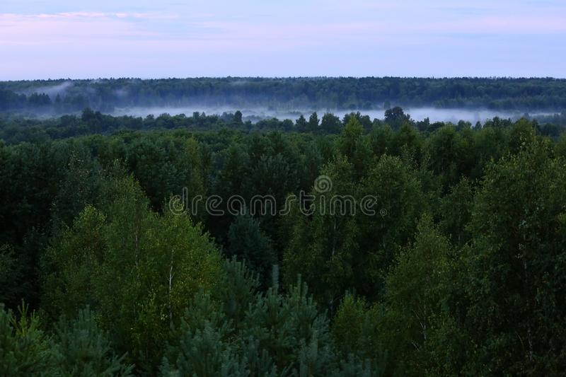 Mist after the rain. Mist over the lake. Misty landscape royalty free stock images