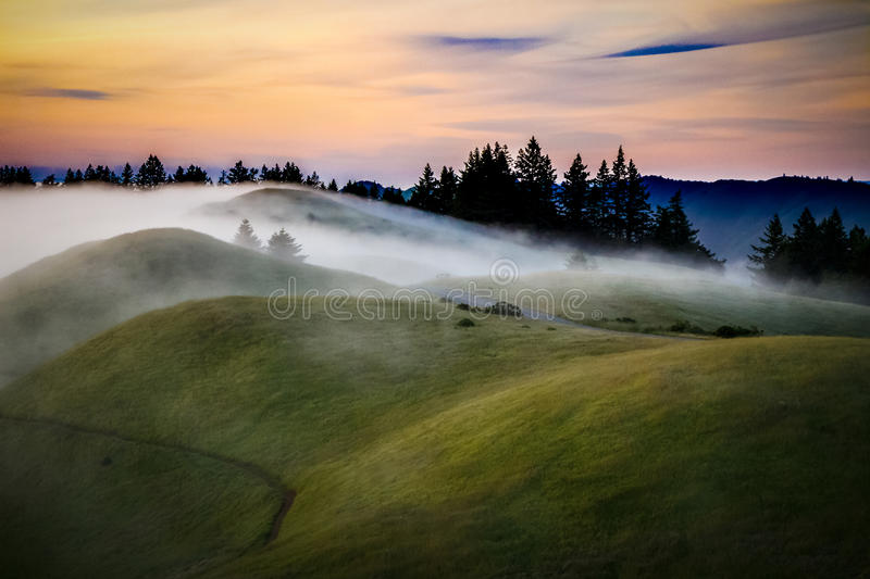Mist over rolling green hills at sunset stock image