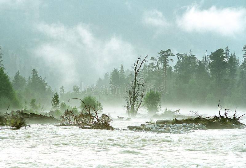 Mist på bergfloden arkivbilder