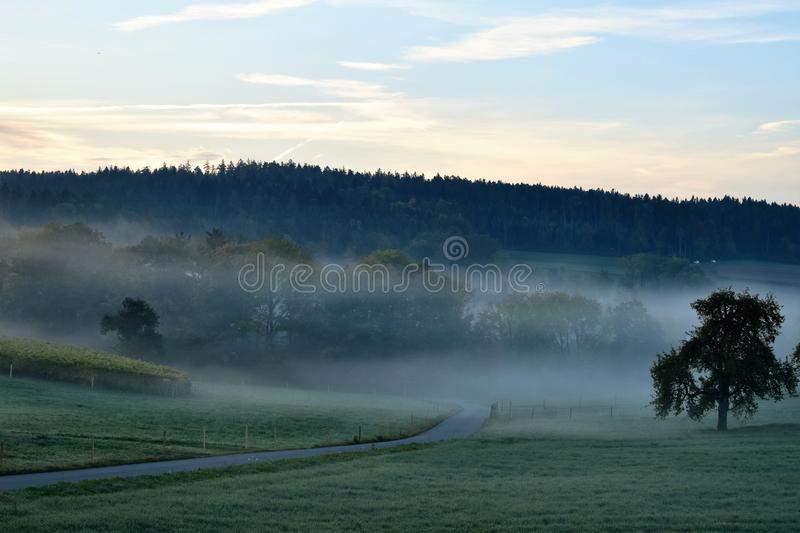 Mist, Sky, Morning, Dawn royalty free stock photo