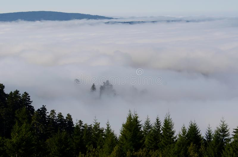 Mist in the Valley royalty free stock photo